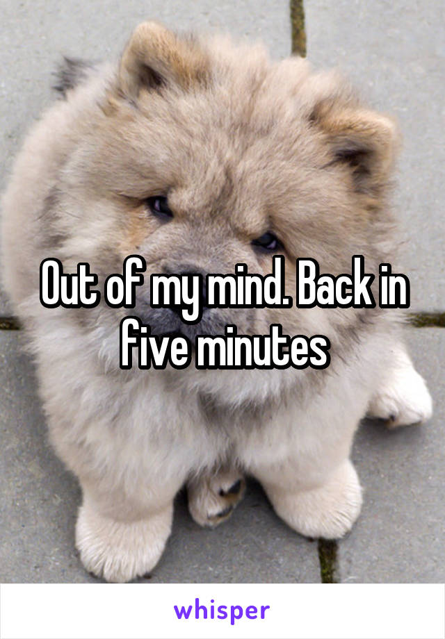 Out of my mind. Back in five minutes