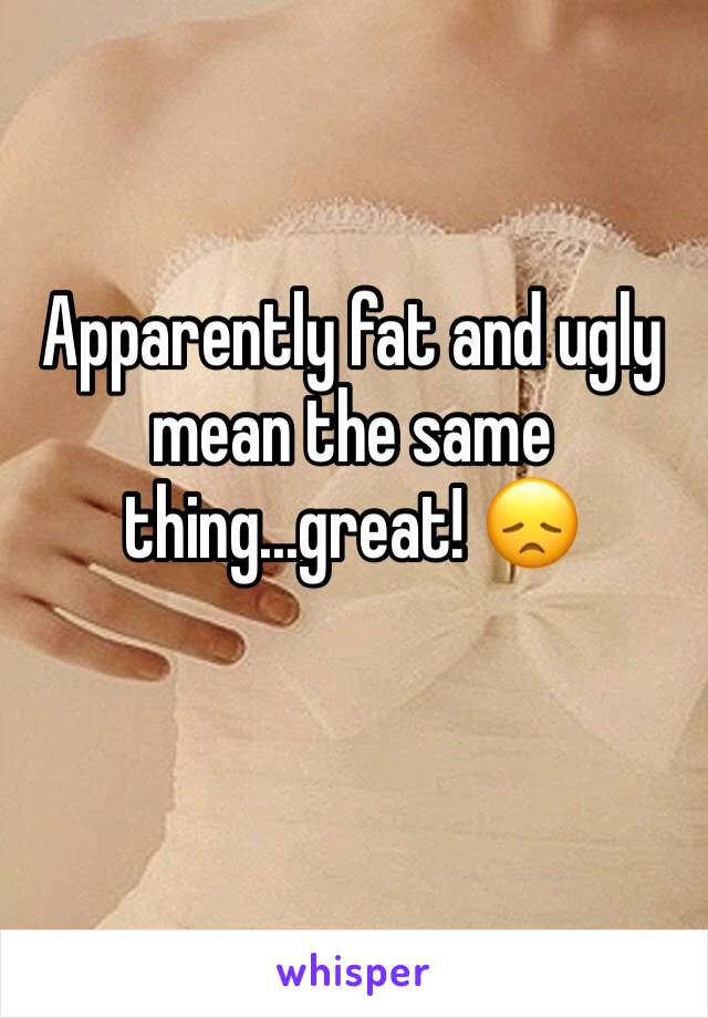 Apparently fat and ugly mean the same thing...great! 😞