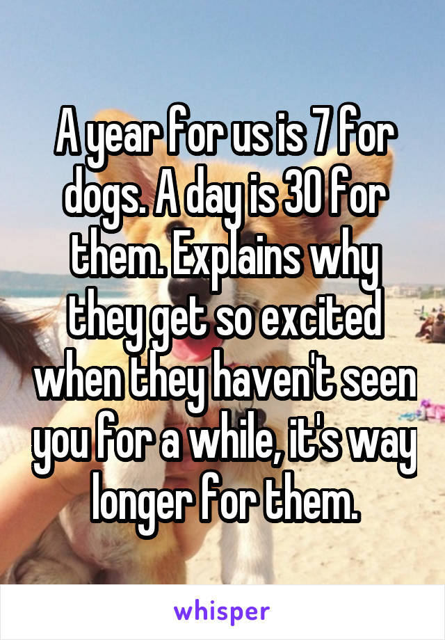 A year for us is 7 for dogs. A day is 30 for them. Explains why they get so excited when they haven't seen you for a while, it's way longer for them.