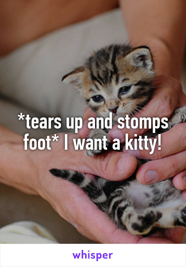 *tears up and stomps foot* I want a kitty!
