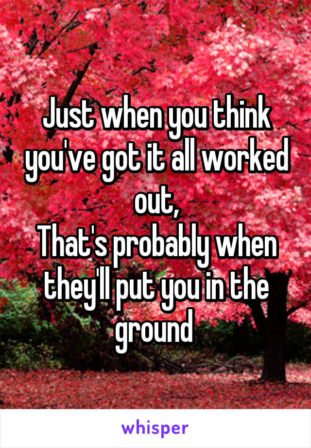 Just when you think you've got it all worked out, That's probably when they'll put you in the ground