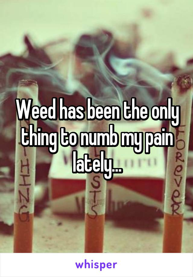 Weed has been the only thing to numb my pain lately...