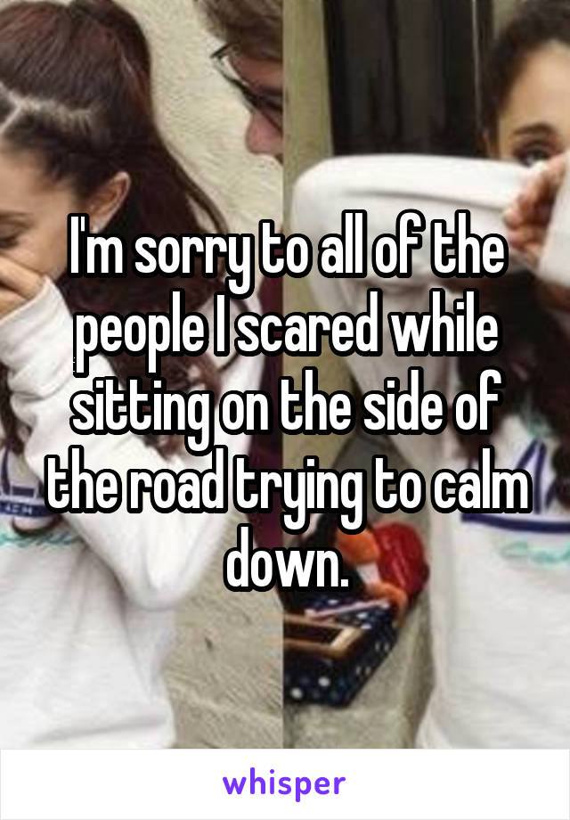 I'm sorry to all of the people I scared while sitting on the side of the road trying to calm down.