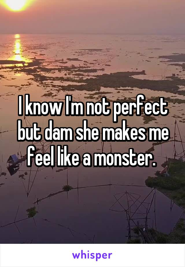 I know I'm not perfect but dam she makes me feel like a monster.