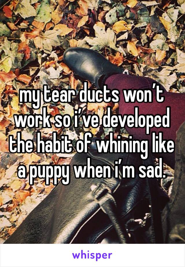 my tear ducts won't work so i've developed the habit of whining like a puppy when i'm sad.