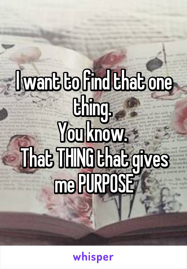 I want to find that one thing.  You know.  That THING that gives me PURPOSE