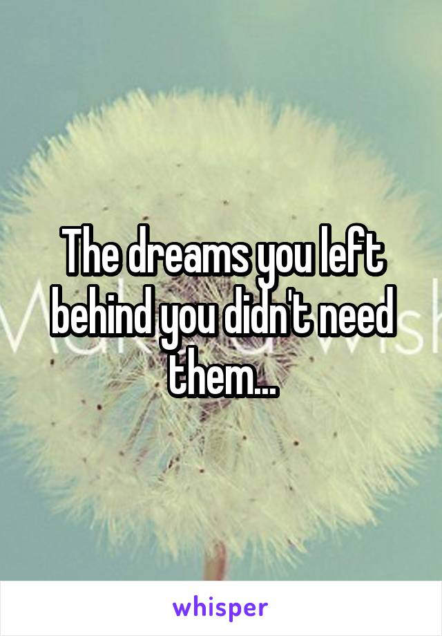 The dreams you left behind you didn't need them...