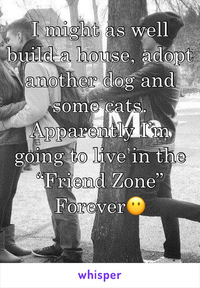 """I might as well build a house, adopt another dog and some cats. Apparently I'm going to live in the """"Friend Zone"""" Forever😶"""