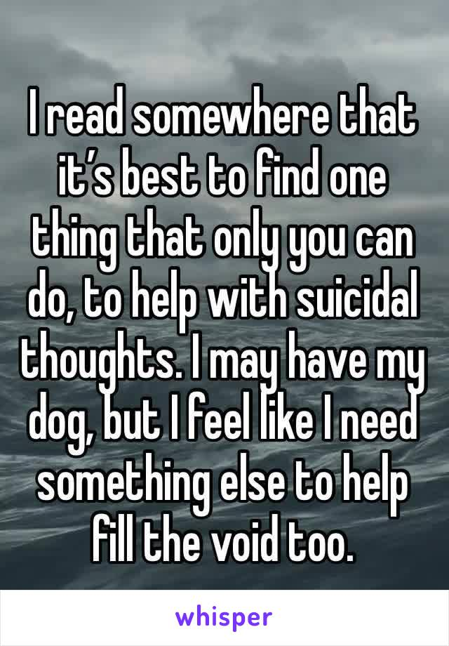 I read somewhere that it's best to find one thing that only you can do, to help with suicidal thoughts. I may have my dog, but I feel like I need something else to help fill the void too.