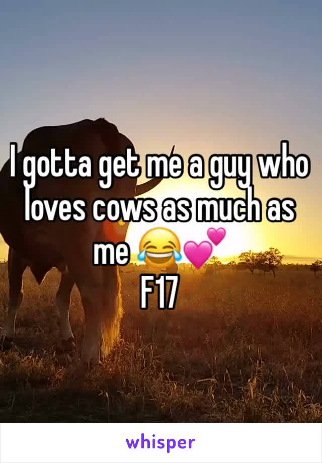 I gotta get me a guy who loves cows as much as me 😂💕 F17