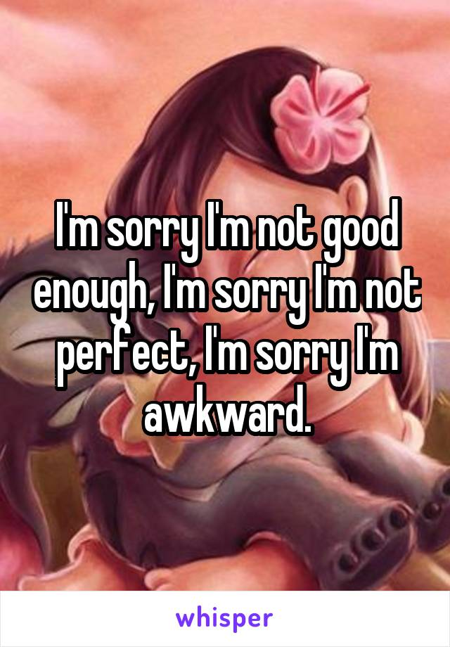 I'm sorry I'm not good enough, I'm sorry I'm not perfect, I'm sorry I'm awkward.