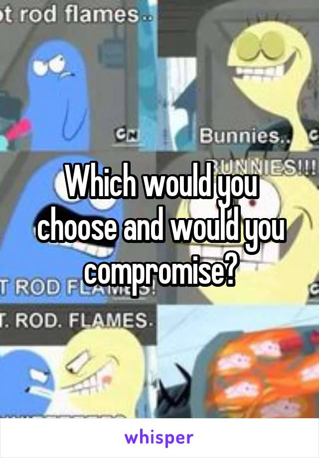 Which would you choose and would you compromise?
