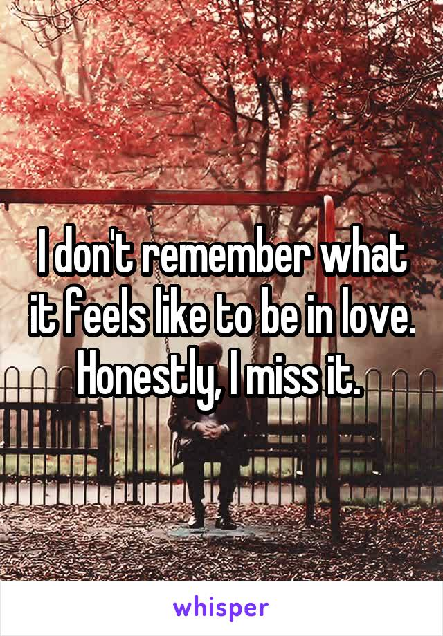 I don't remember what it feels like to be in love. Honestly, I miss it.