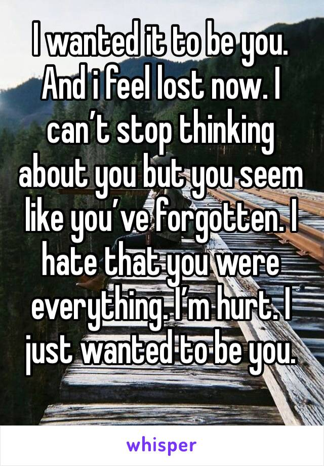 I wanted it to be you. And i feel lost now. I can't stop thinking about you but you seem like you've forgotten. I hate that you were everything. I'm hurt. I just wanted to be you.