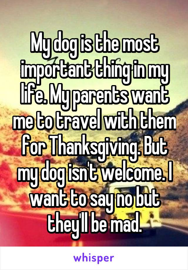My dog is the most important thing in my life. My parents want me to travel with them for Thanksgiving. But my dog isn't welcome. I want to say no but they'll be mad.