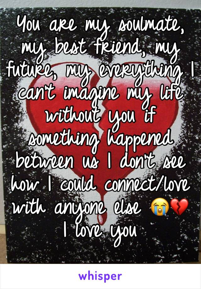 You are my soulmate, my best friend, my future, my everything I can't imagine my life without you if something happened between us I don't see how I could connect/love with anyone else 😭💔 I love you