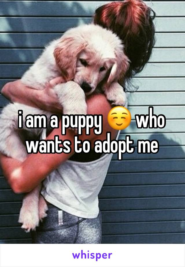 i am a puppy ☺️ who wants to adopt me