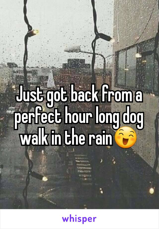 Just got back from a perfect hour long dog walk in the rain😄