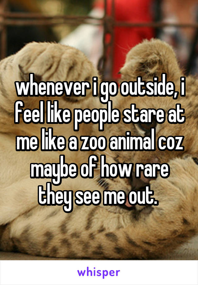 whenever i go outside, i feel like people stare at me like a zoo animal coz maybe of how rare they see me out.