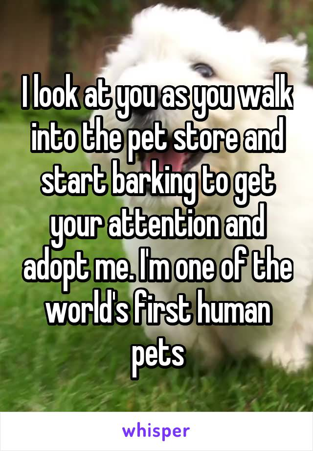 I look at you as you walk into the pet store and start barking to get your attention and adopt me. I'm one of the world's first human pets