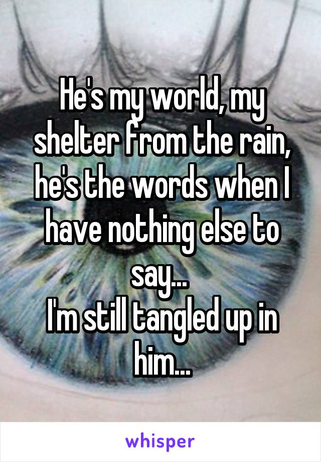 He's my world, my shelter from the rain, he's the words when I have nothing else to say...  I'm still tangled up in him...