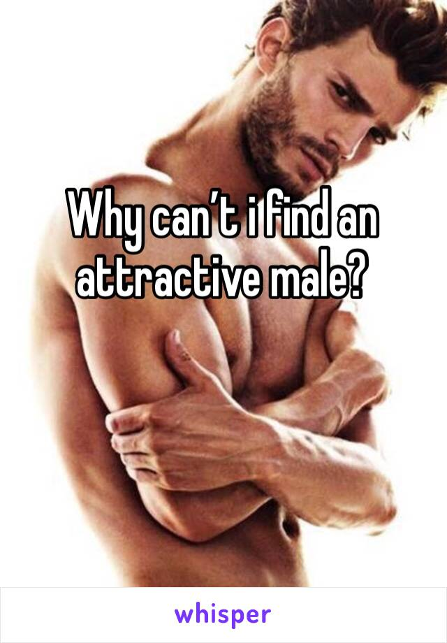Why can't i find an attractive male?
