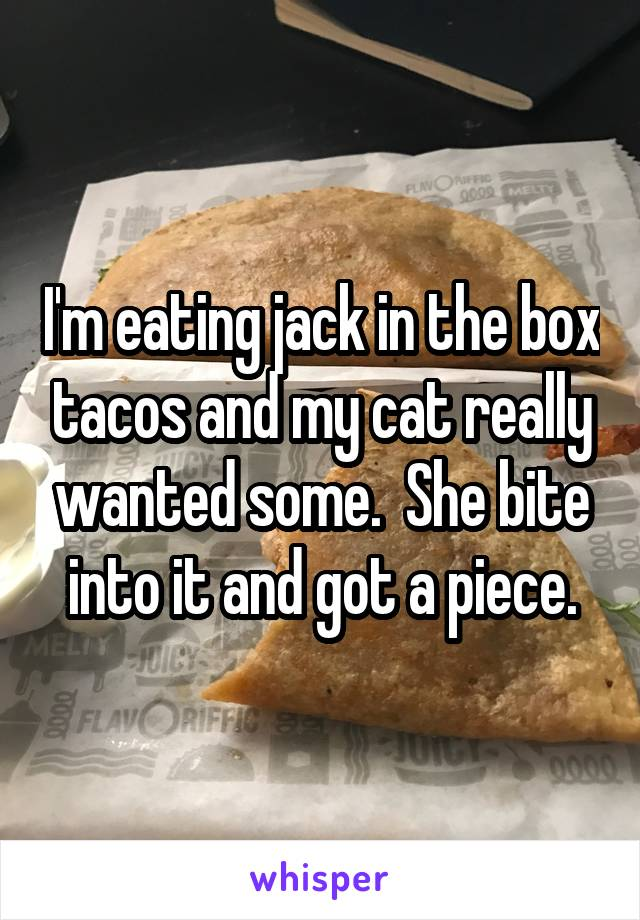 I'm eating jack in the box tacos and my cat really wanted some.  She bite into it and got a piece.