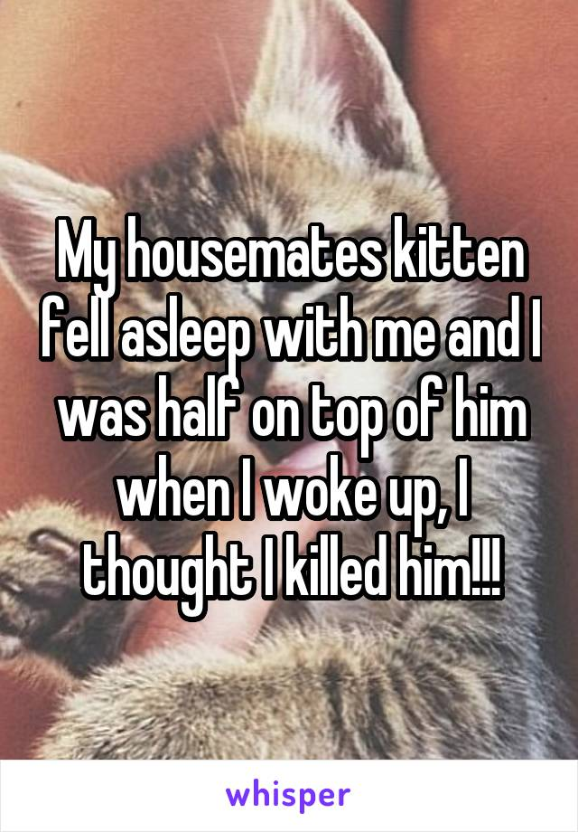 My housemates kitten fell asleep with me and I was half on top of him when I woke up, I thought I killed him!!!