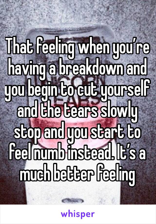 That feeling when you're having a breakdown and you begin to cut yourself and the tears slowly stop and you start to feel numb instead. It's a much better feeling