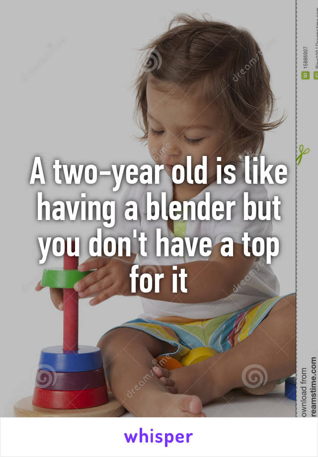 A two-year old is like having a blender but you don't have a top for it