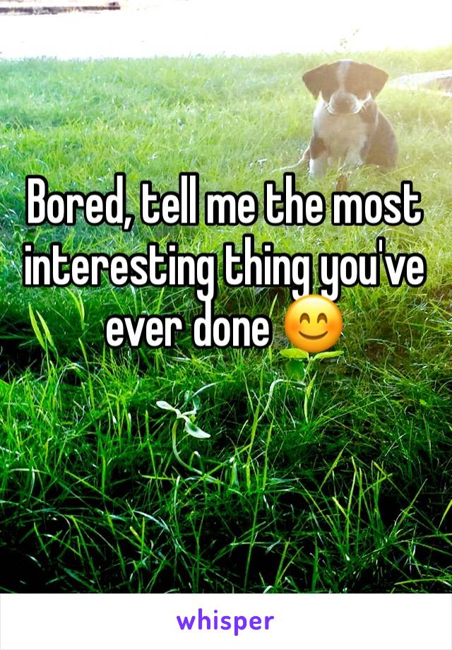 Bored, tell me the most interesting thing you've ever done 😊
