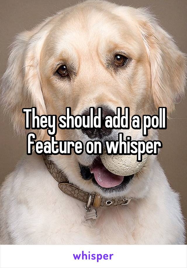 They should add a poll feature on whisper