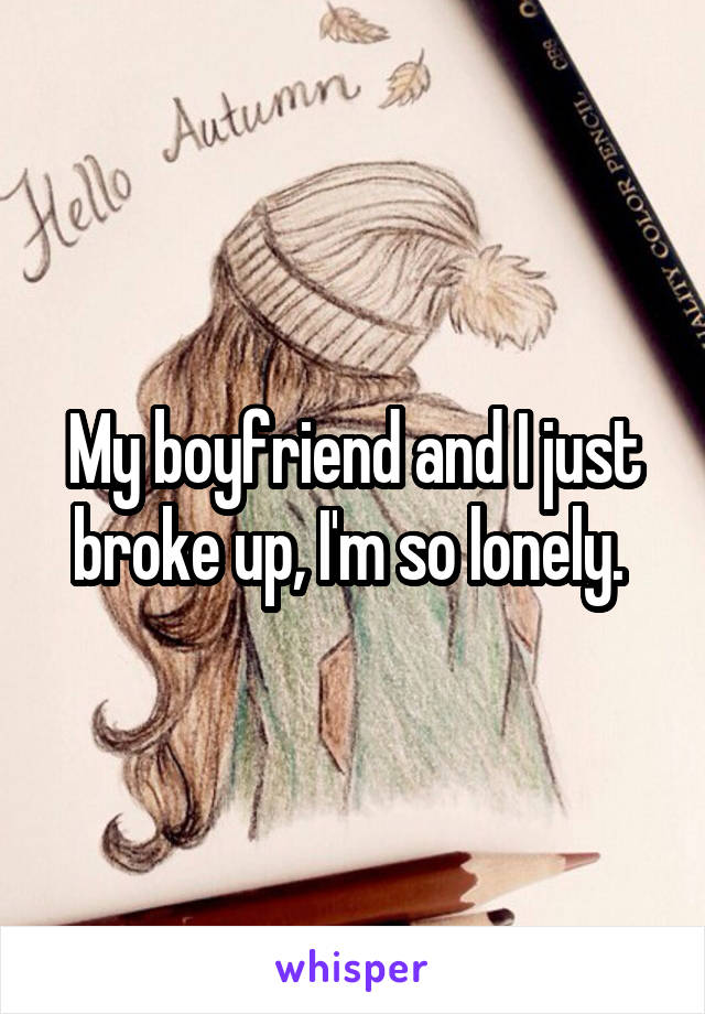 My boyfriend and I just broke up, I'm so lonely.