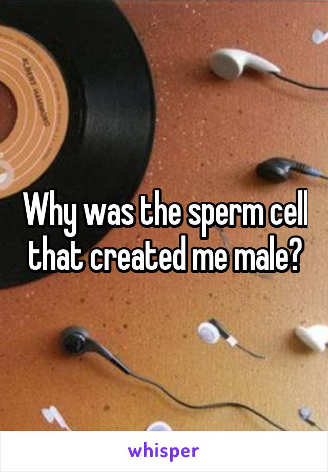 Why was the sperm cell that created me male?