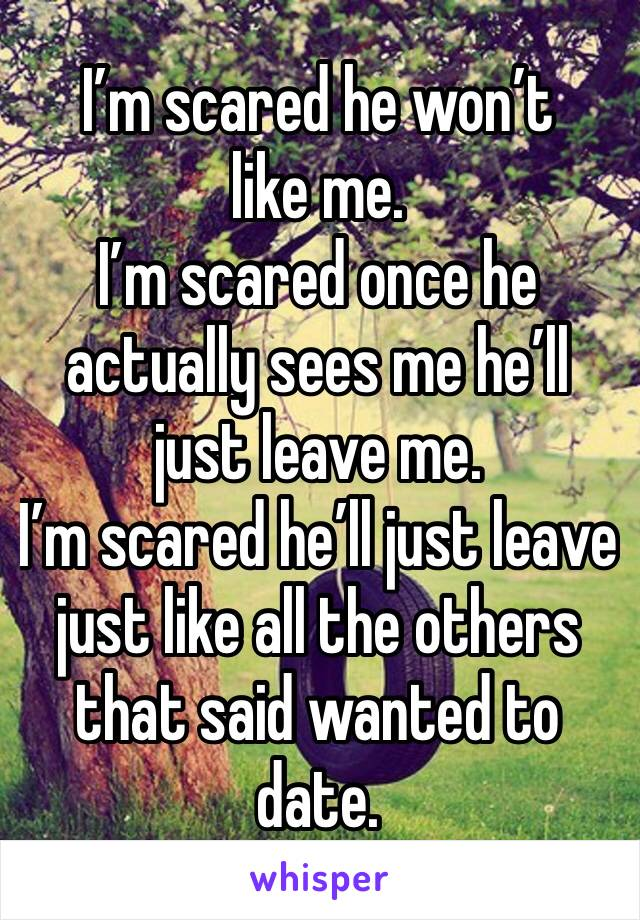 I'm scared he won't like me.  I'm scared once he actually sees me he'll just leave me.  I'm scared he'll just leave just like all the others that said wanted to date.