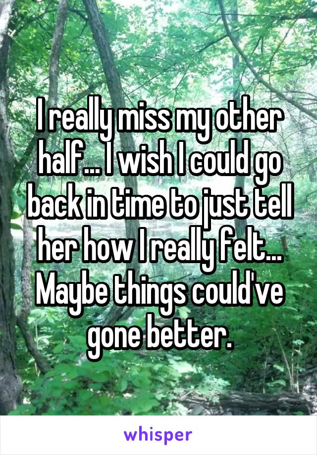 I really miss my other half... I wish I could go back in time to just tell her how I really felt... Maybe things could've gone better.