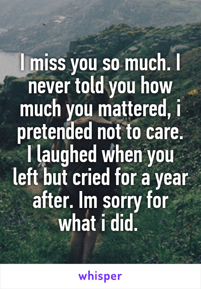 I miss you so much. I never told you how much you mattered, i pretended not to care. I laughed when you left but cried for a year after. Im sorry for what i did.