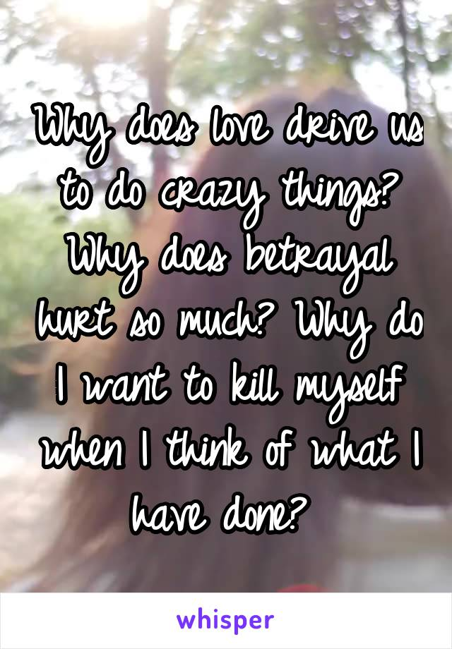 Why does love drive us to do crazy things? Why does betrayal hurt so much? Why do I want to kill myself when I think of what I have done?