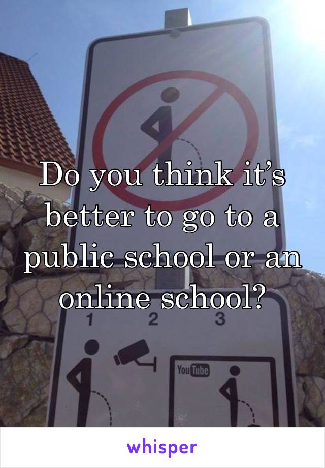 Do you think it's better to go to a public school or an online school?