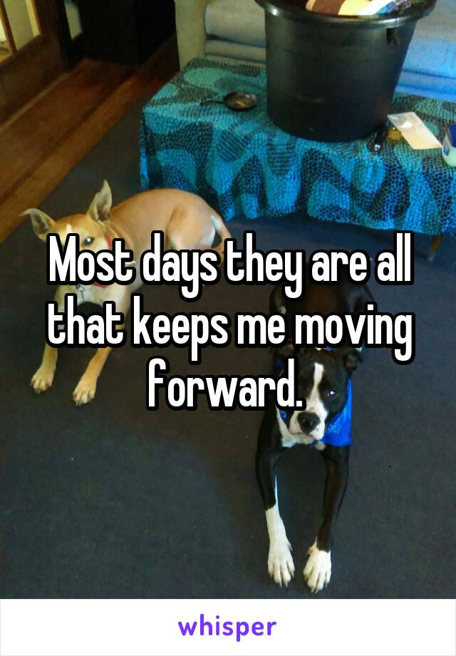 Most days they are all that keeps me moving forward.