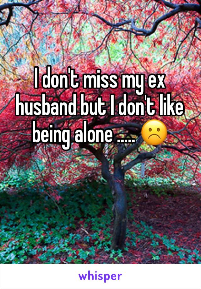 I don't miss my ex husband but I don't like being alone ..... ☹️