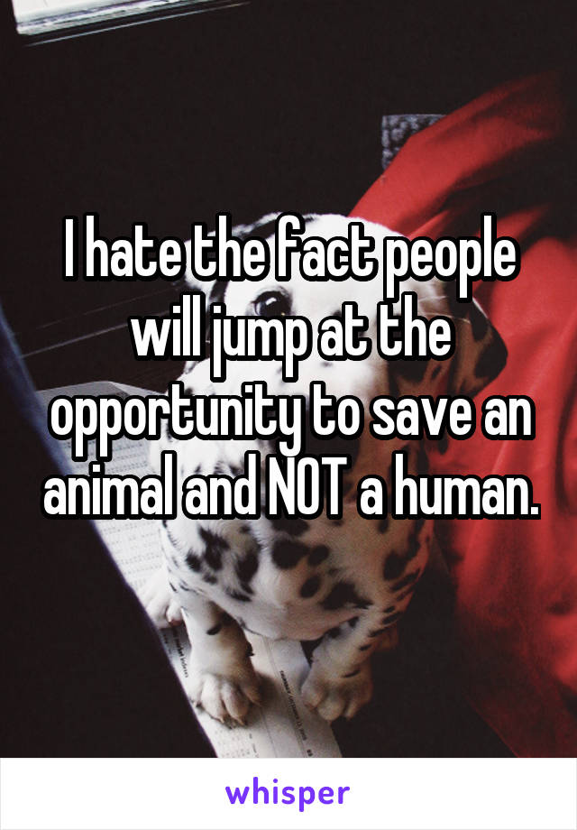 I hate the fact people will jump at the opportunity to save an animal and NOT a human.
