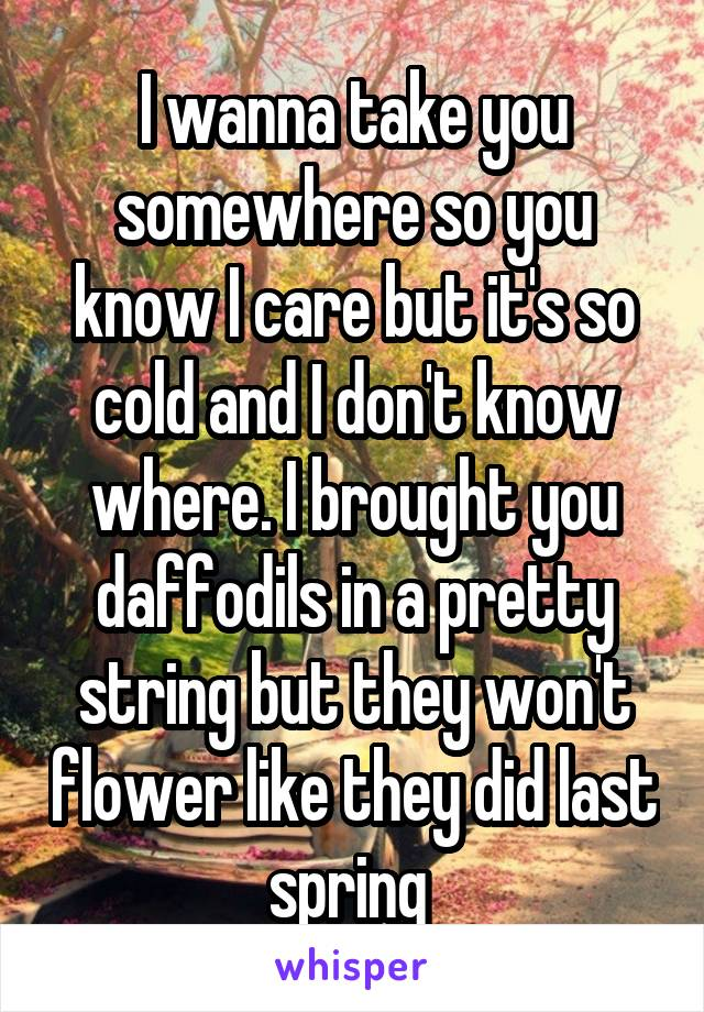 I wanna take you somewhere so you know I care but it's so cold and I don't know where. I brought you daffodils in a pretty string but they won't flower like they did last spring