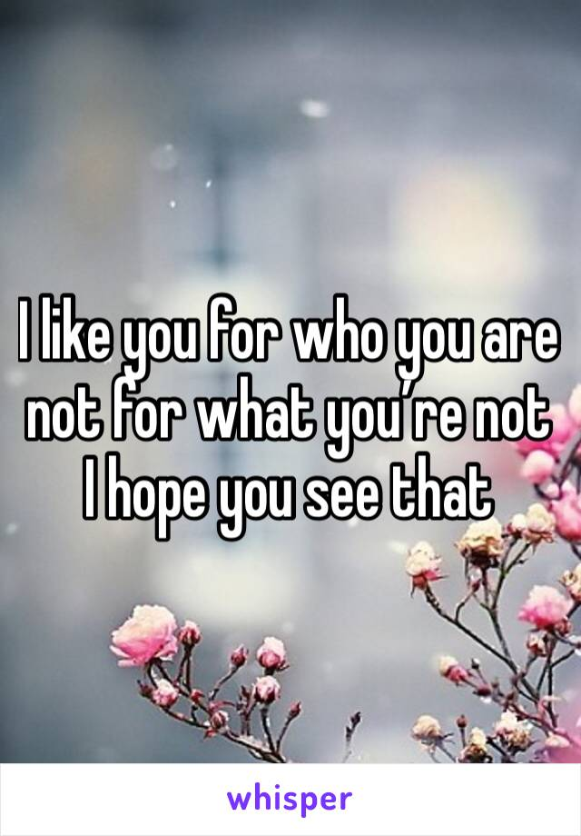 I like you for who you are not for what you're not I hope you see that
