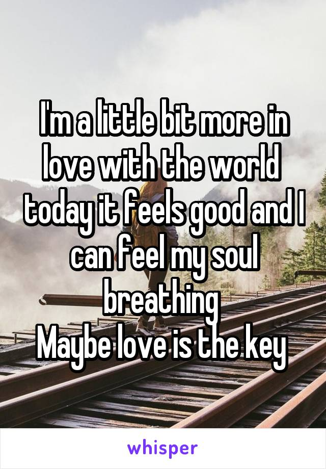 I'm a little bit more in love with the world  today it feels good and I can feel my soul breathing  Maybe love is the key