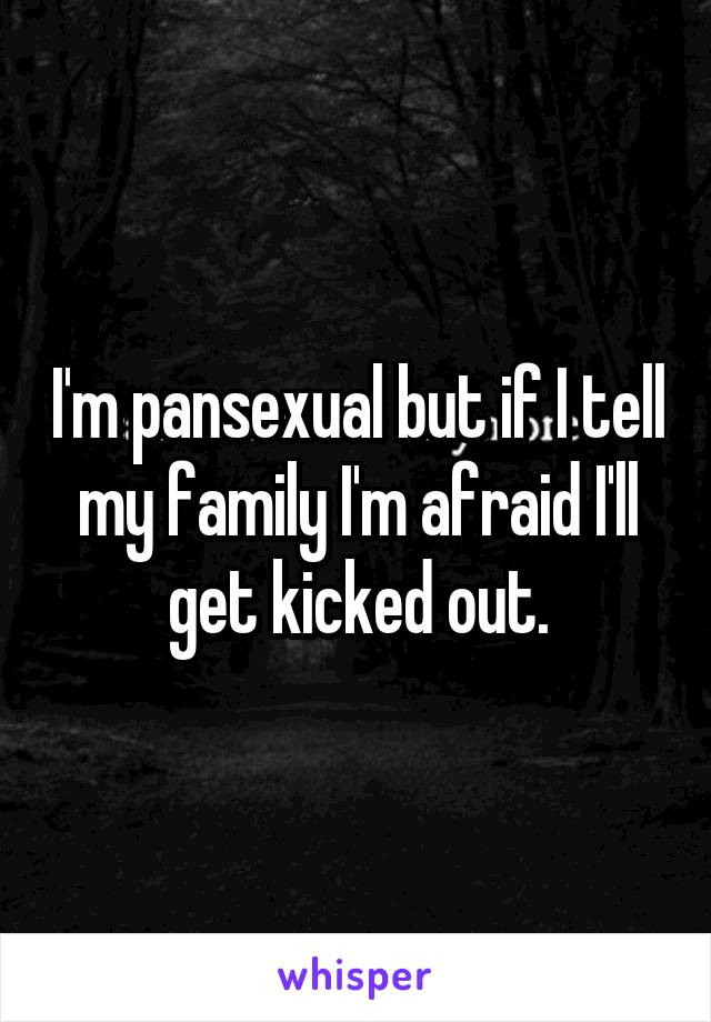 I'm pansexual but if I tell my family I'm afraid I'll get kicked out.