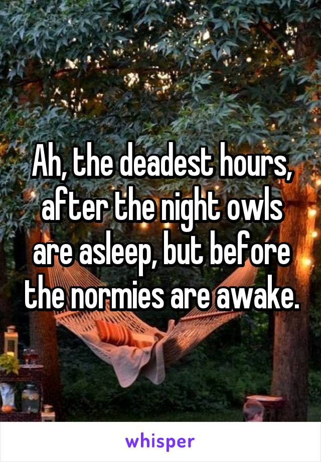 Ah, the deadest hours, after the night owls are asleep, but before the normies are awake.
