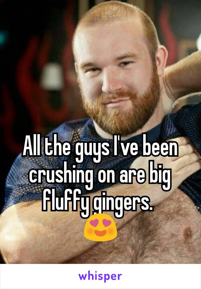 All the guys I've been crushing on are big fluffy gingers.  😍