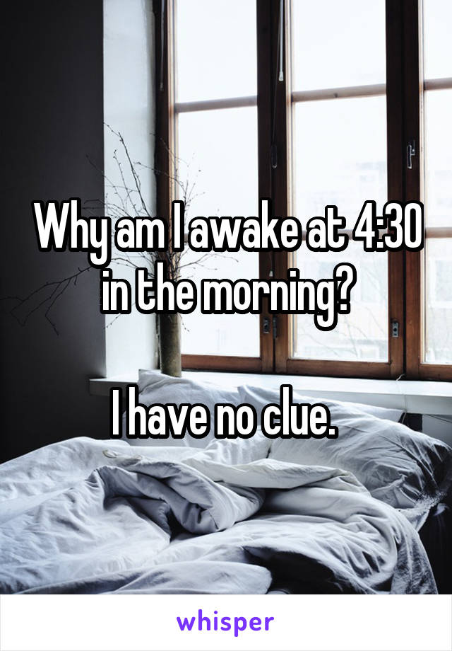 Why am I awake at 4:30 in the morning?  I have no clue.