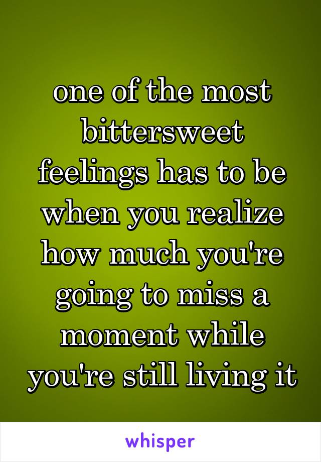 one of the most bittersweet feelings has to be when you realize how much you're going to miss a moment while you're still living it